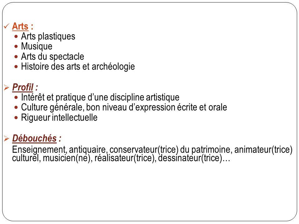 Arts : Arts plastiques Musique Arts du spectacle Histoire des arts et archéologie  Profil : Intérêt et pratique d'une discipline artistique Culture g