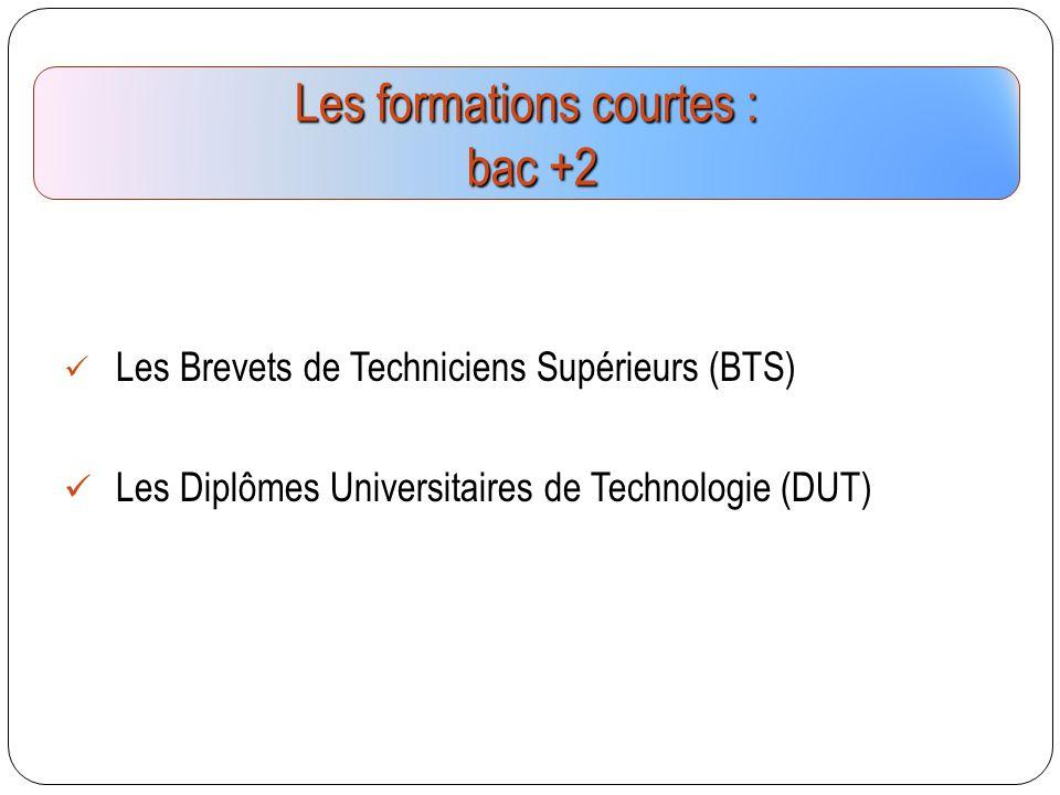 Les Brevets de Techniciens Supérieurs (BTS) Les Diplômes Universitaires de Technologie (DUT) Les formations courtes : bac +2