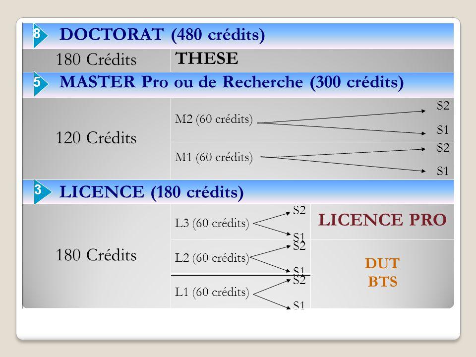 S2 L1 (60 crédits) S1 DUT BTS S2 L2 (60 crédits) S1 LICENCE PRO S2 L3 (60 crédits) S1 180 Crédits LICENCE (180 crédits) S2 M1 (60 crédits) S1 S2 M2 (6