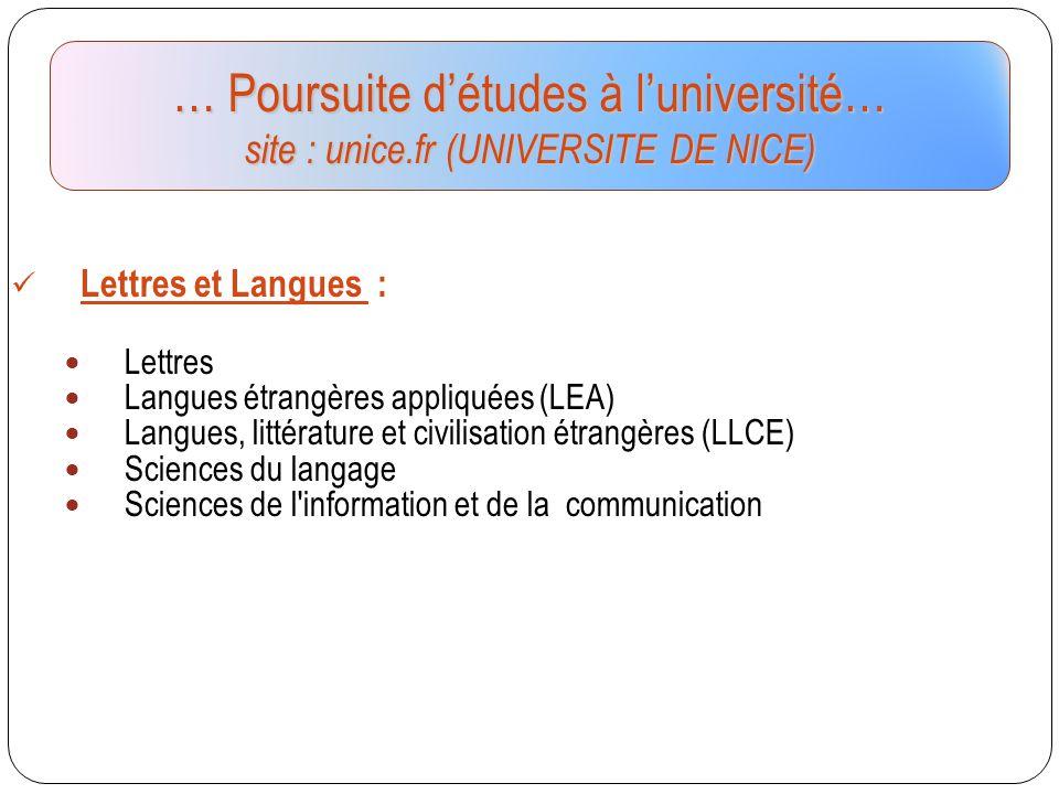 Lettres et Langues : Lettres Langues étrangères appliquées (LEA) Langues, littérature et civilisation étrangères (LLCE) Sciences du langage Sciences d