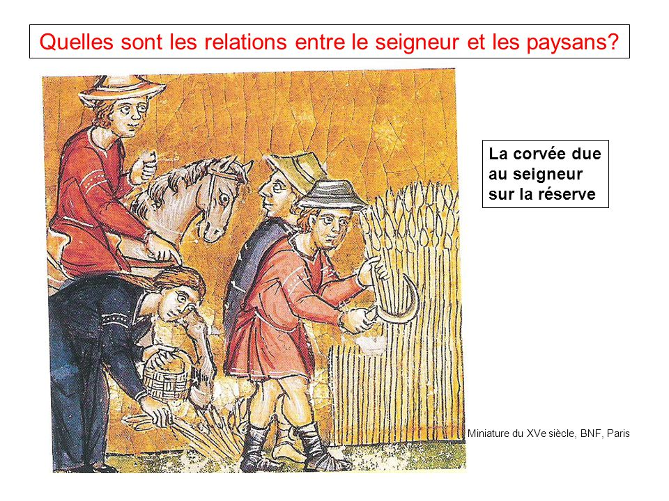 Quelles sont les relations entre le seigneur et les paysans.