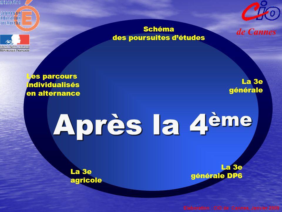 La 3e générale Schéma des poursuites d'études Elaboration : CIO de Cannes, Janvier 2009 de Cannes La 3e générale DP6 Les parcours individualisés en al
