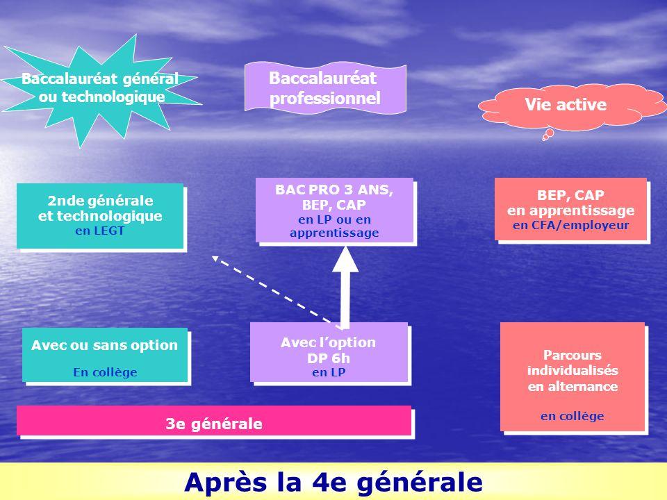 3e générale Parcours individualisés en alternance en collège Parcours individualisés en alternance en collège Avec l'option DP 6h en LP Avec l'option
