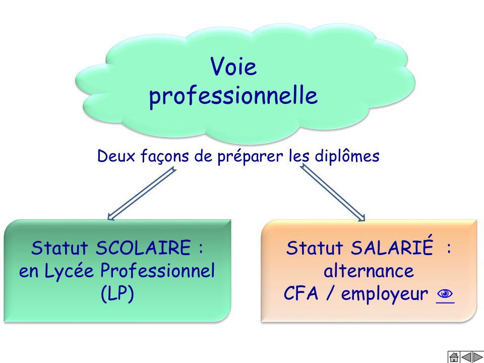 Voie professionnelle Statut SCOLAIRE : en Lycée Professionnel (LP) Statut SCOLAIRE : en Lycée Professionnel (LP) Statut SALARIÉ : alternance CFA / emp