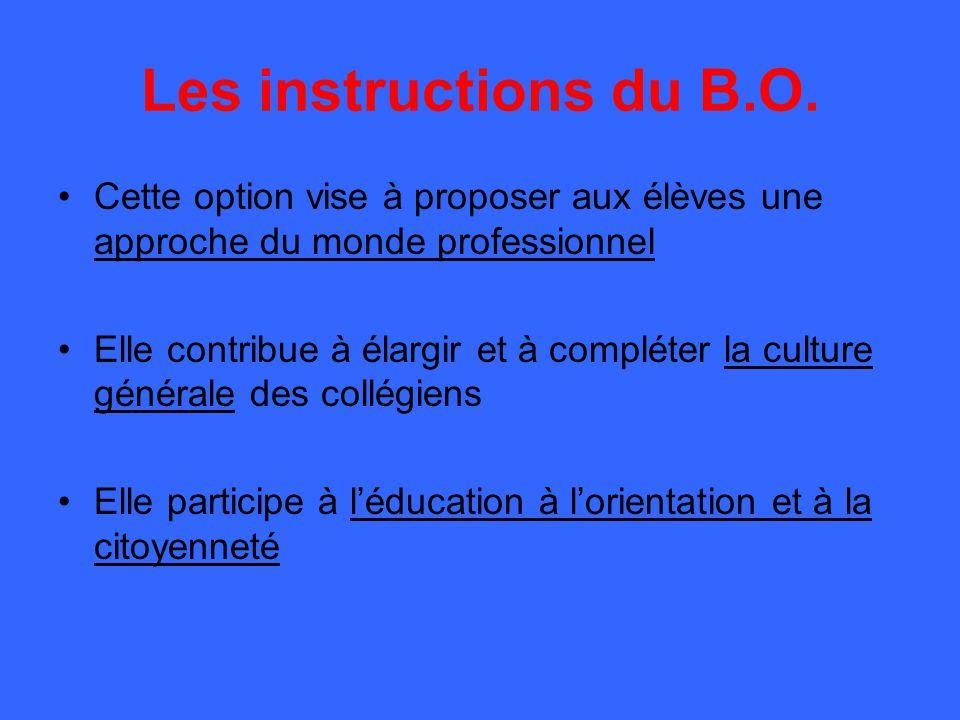 Les instructions du B.O. Cette option vise à proposer aux élèves une approche du monde professionnel Elle contribue à élargir et à compléter la cultur