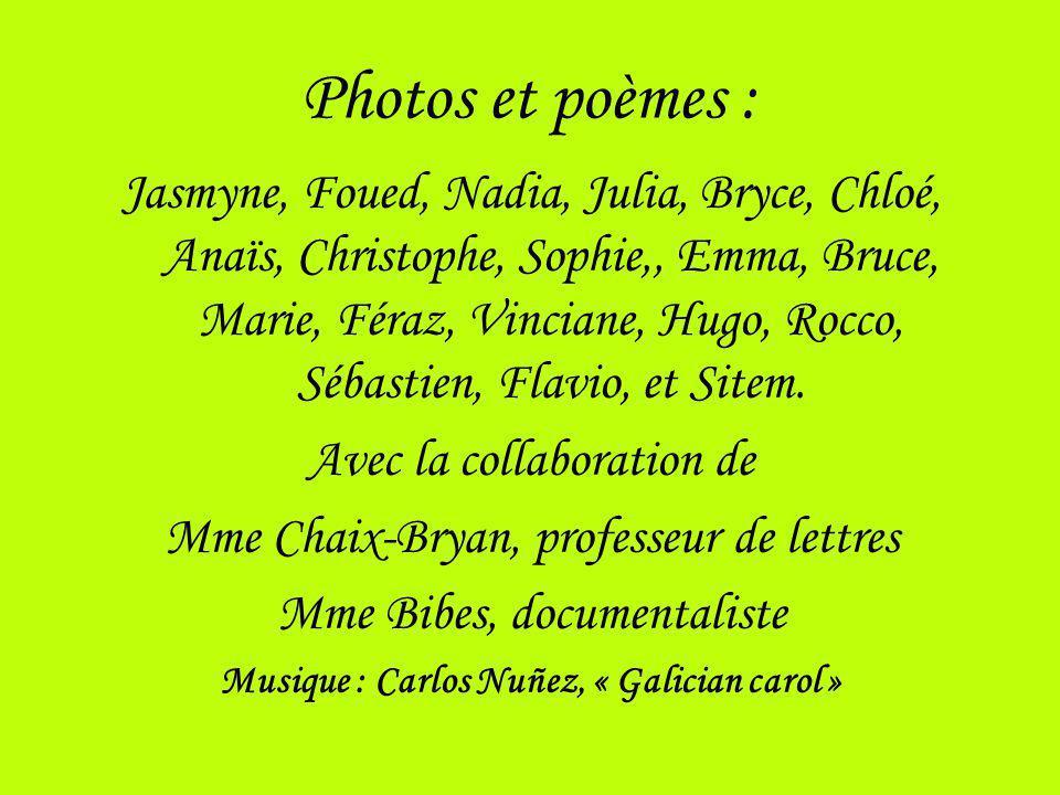 Photos et poèmes : Jasmyne, Foued, Nadia, Julia, Bryce, Chloé, Anaïs, Christophe, Sophie,, Emma, Bruce, Marie, Féraz, Vinciane, Hugo, Rocco, Sébastien