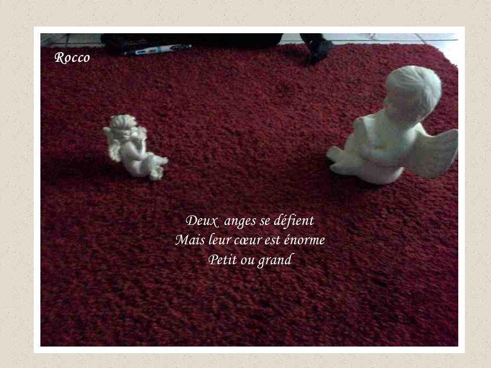 Deux anges se défient Mais leur cœur est énorme Petit ou grand Rocco