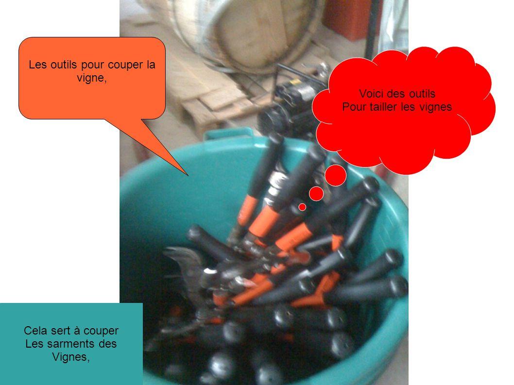 Voici des outils Pour tailler les vignes Les outils pour couper la vigne, Cela sert à couper Les sarments des Vignes,