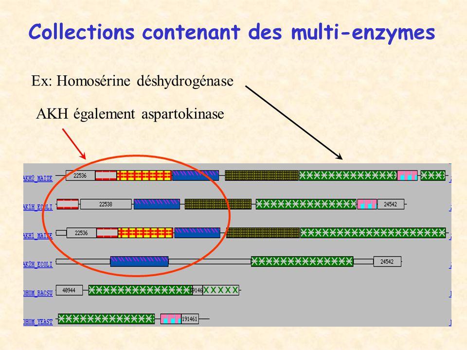 Collections contenant des multi-enzymes AKH également aspartokinase Ex: Homosérine déshydrogénase