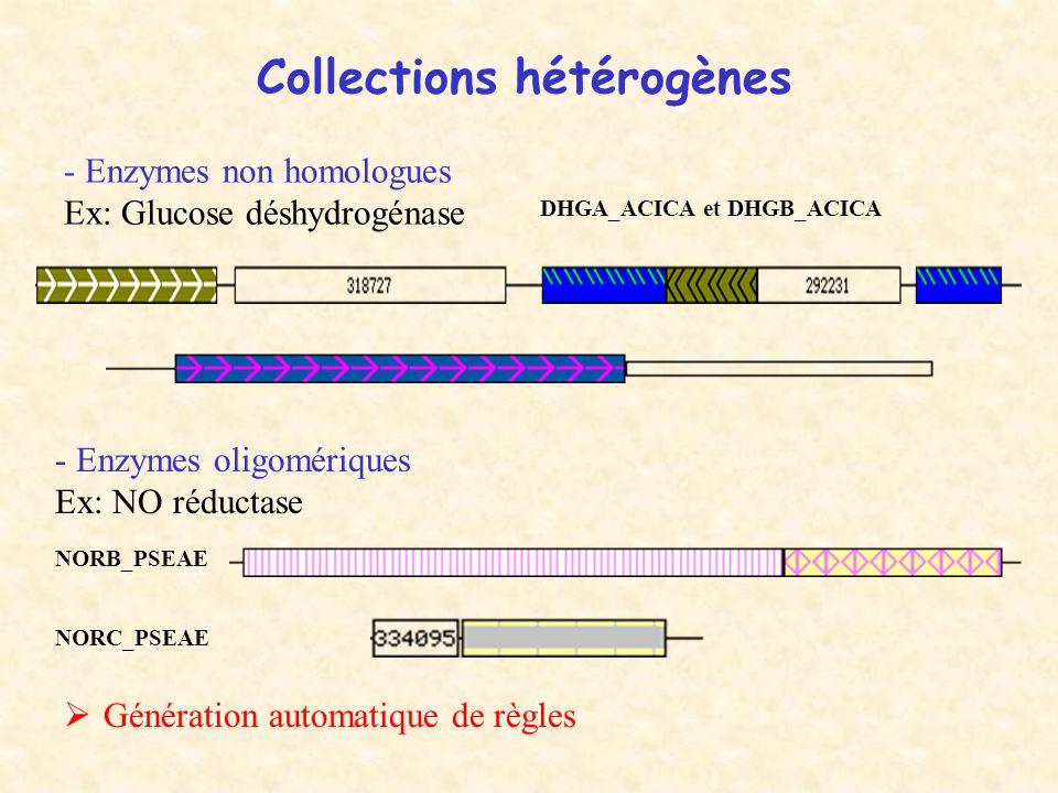 Collections hétérogènes - Enzymes non homologues Ex: Glucose déshydrogénase - Enzymes oligomériques Ex: NO réductase NORB_PSEAE NORC_PSEAE DHGA_ACICA et DHGB_ACICA  Génération automatique de règles