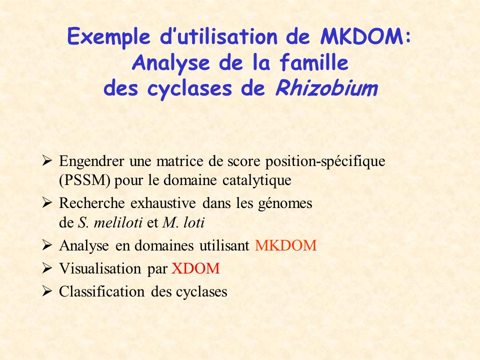 Exemple d'utilisation de MKDOM: Analyse de la famille des cyclases de Rhizobium  Engendrer une matrice de score position-spécifique (PSSM) pour le domaine catalytique  Recherche exhaustive dans les génomes de S.