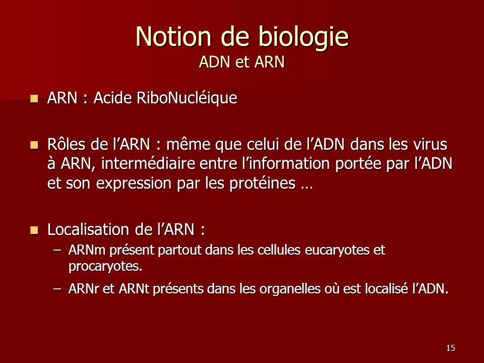 15 Notion de biologie ADN et ARN ARN : Acide RiboNucléique ARN : Acide RiboNucléique Rôles de l'ARN : même que celui de l'ADN dans les virus à ARN, in
