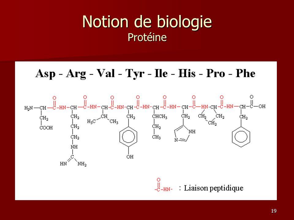 19 Notion de biologie Protéine