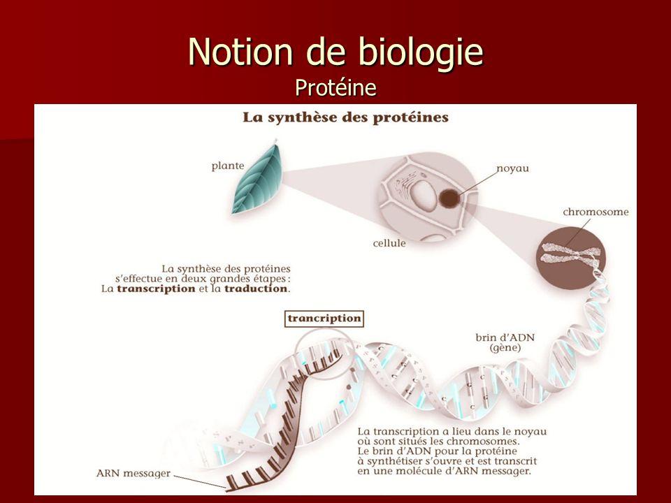 21 Notion de biologie Protéine