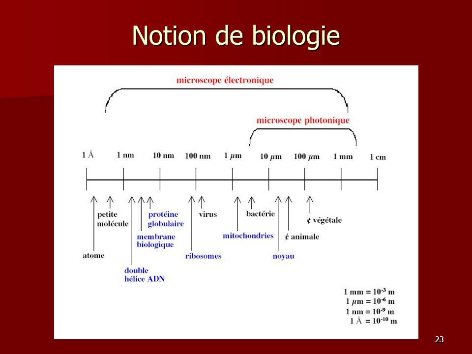 23 Notion de biologie