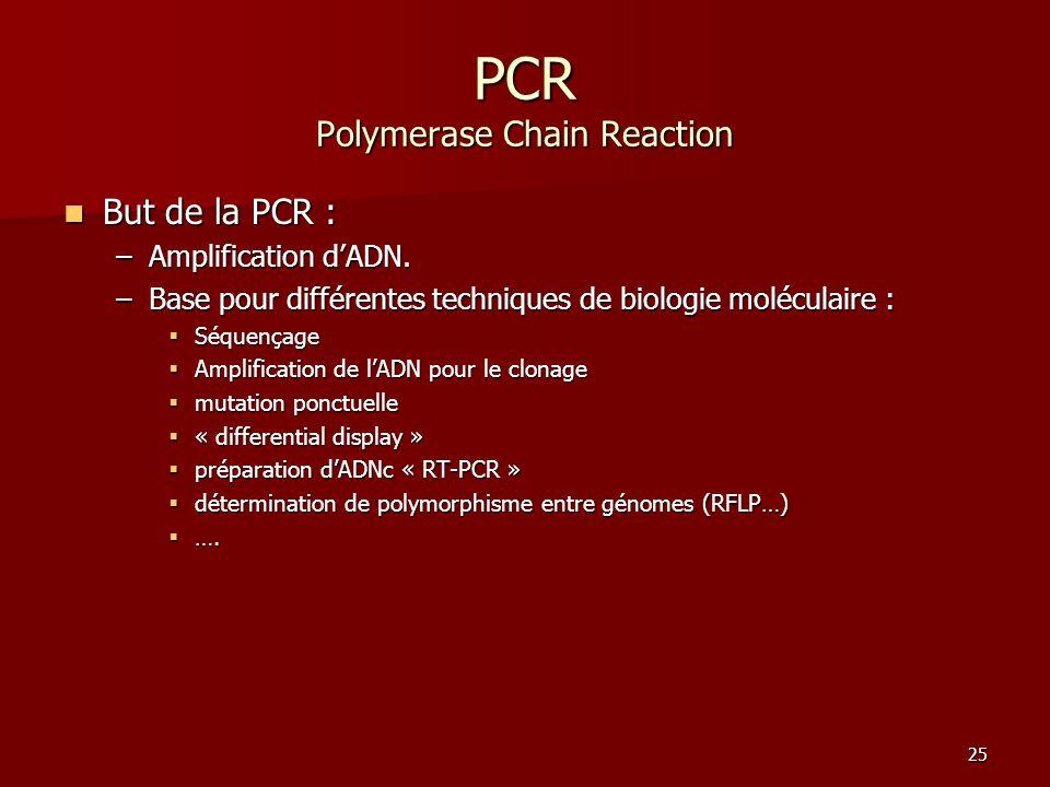 25 PCR Polymerase Chain Reaction But de la PCR : But de la PCR : –Amplification d'ADN. –Base pour différentes techniques de biologie moléculaire :  S