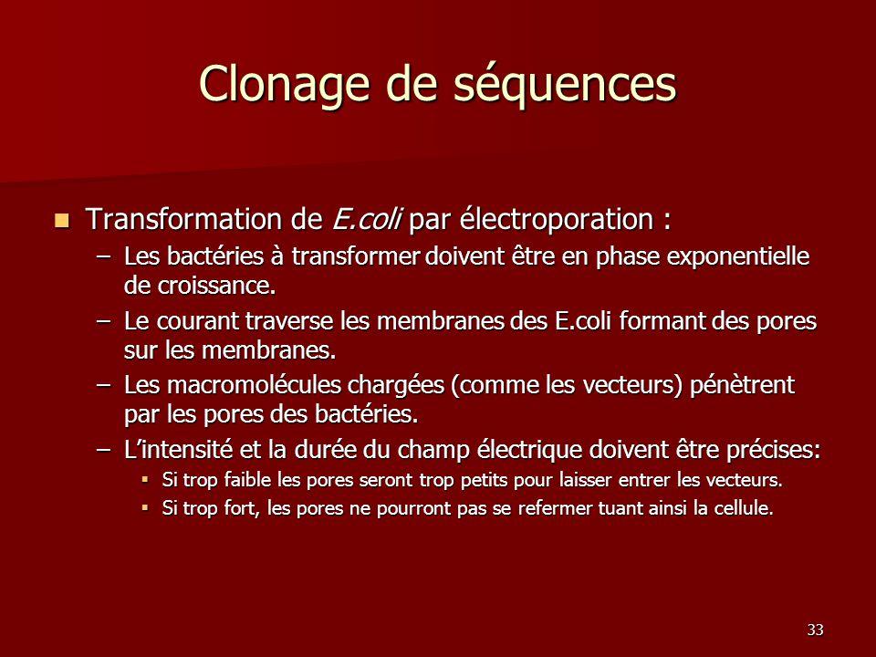 33 Clonage de séquences Transformation de E.coli par électroporation : Transformation de E.coli par électroporation : –Les bactéries à transformer doivent être en phase exponentielle de croissance.