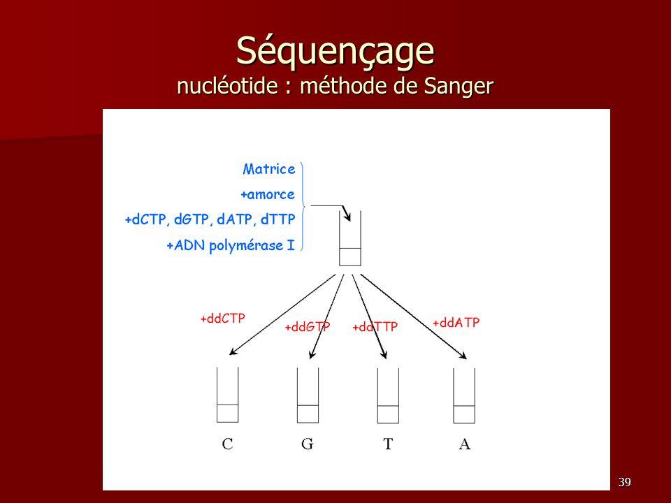 39 Séquençage nucléotide : méthode de Sanger