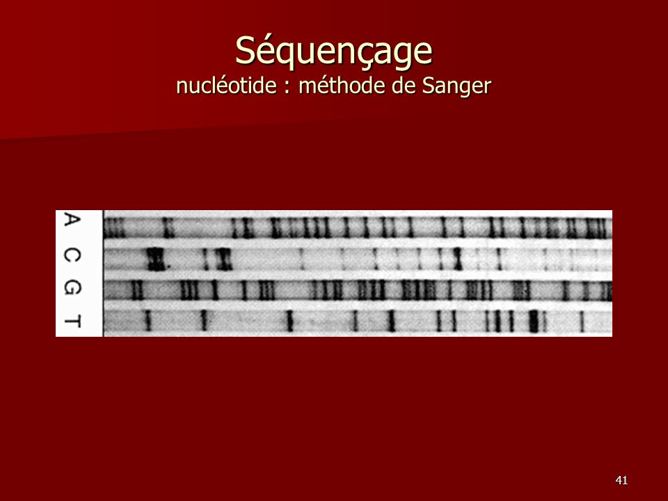 41 Séquençage nucléotide : méthode de Sanger