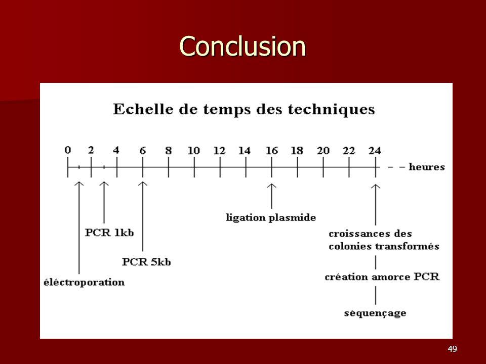 49 Conclusion