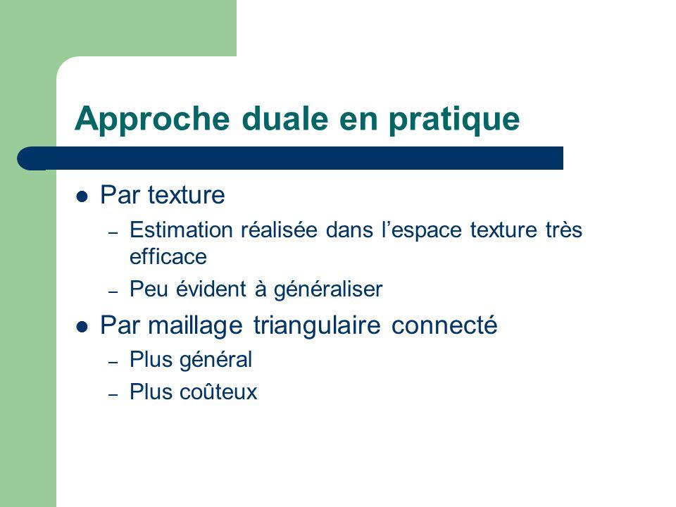Approche duale en pratique Par texture – Estimation réalisée dans l'espace texture très efficace – Peu évident à généraliser Par maillage triangulaire connecté – Plus général – Plus coûteux
