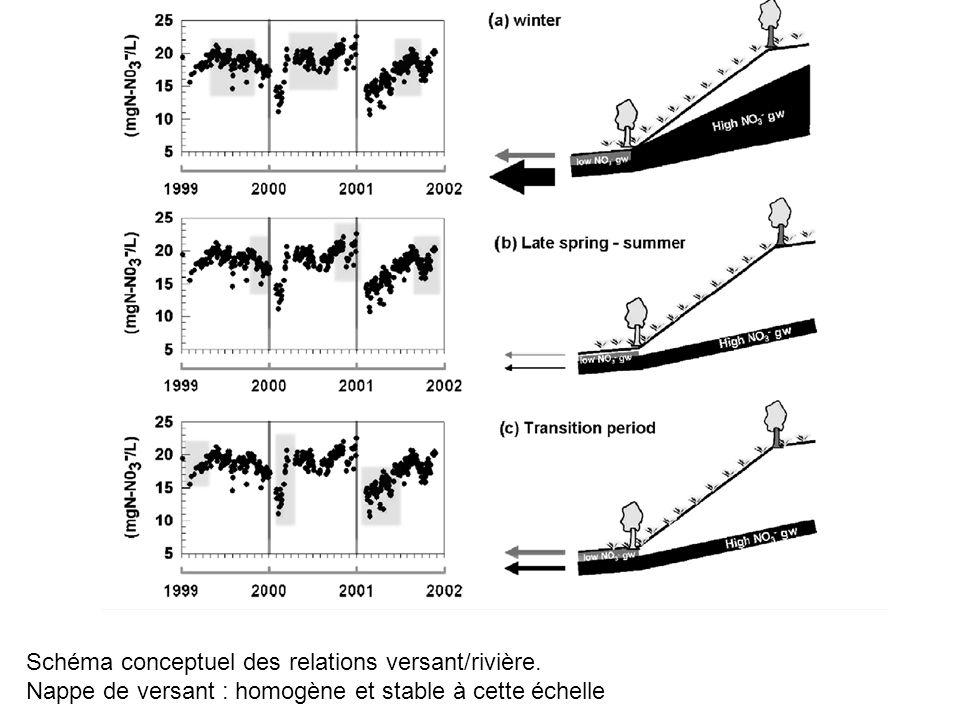 Schéma conceptuel des relations versant/rivière. Nappe de versant : homogène et stable à cette échelle