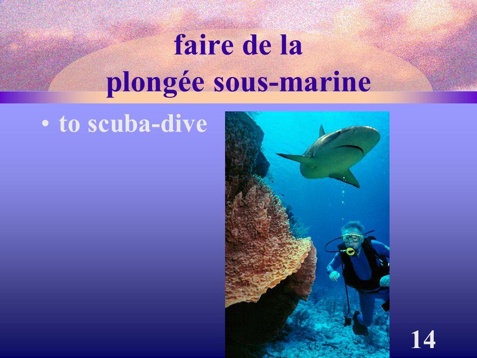 14 faire de la plongée sous-marine to scuba-dive
