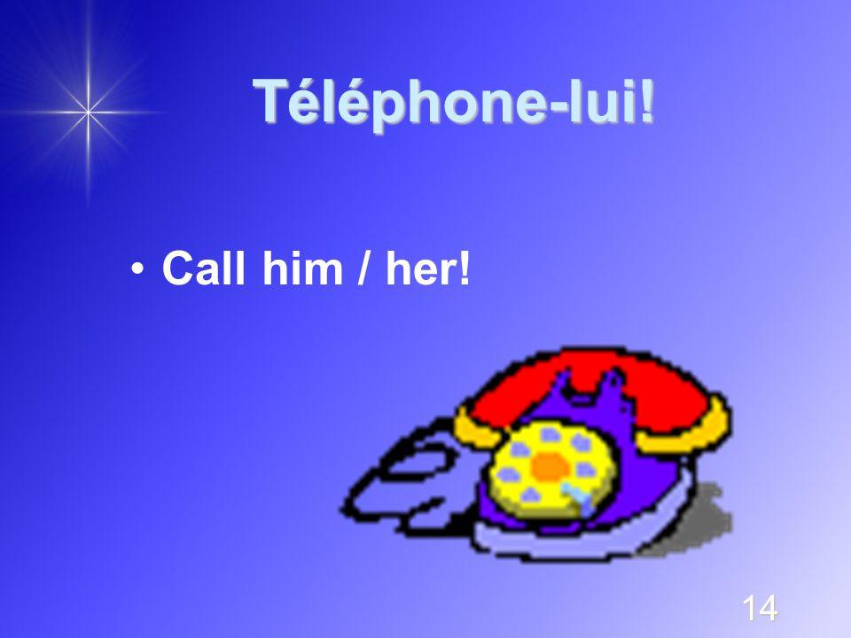 14 Téléphone-lui! Call him / her!