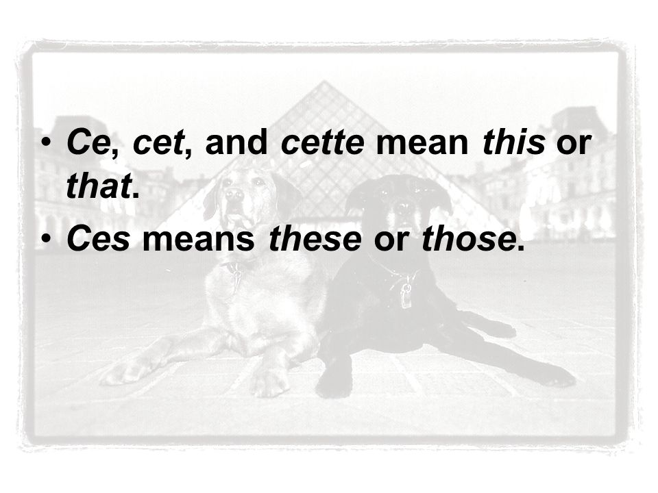Ce, cet, and cette mean this or that. Ces means these or those.