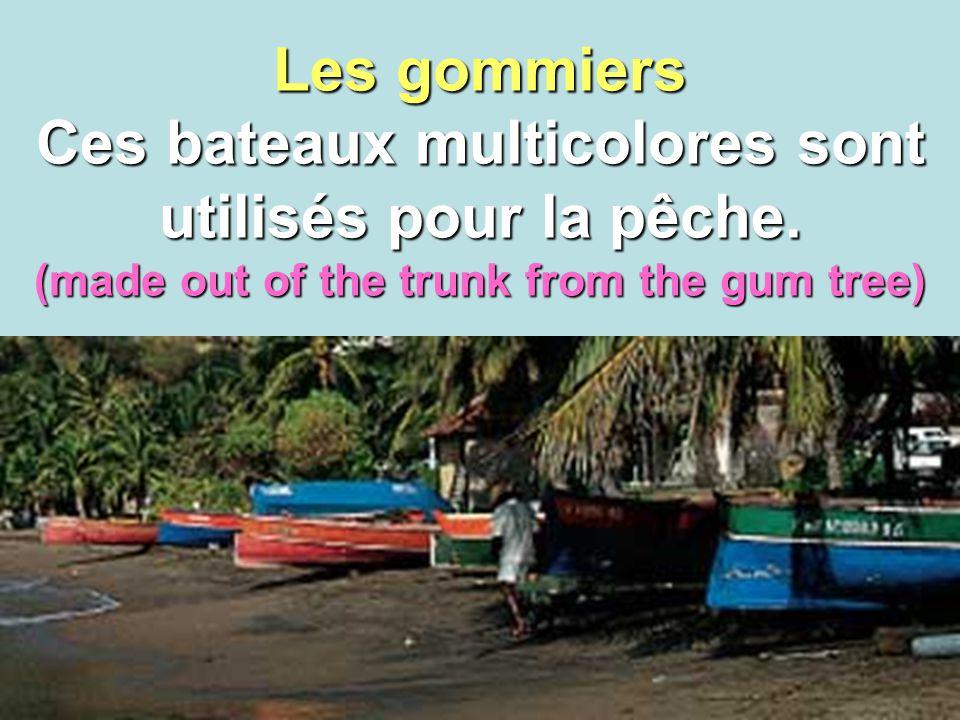 6 Les gommiers Ces bateaux multicolores sont utilisés pour la pêche. (made out of the trunk from the gum tree)