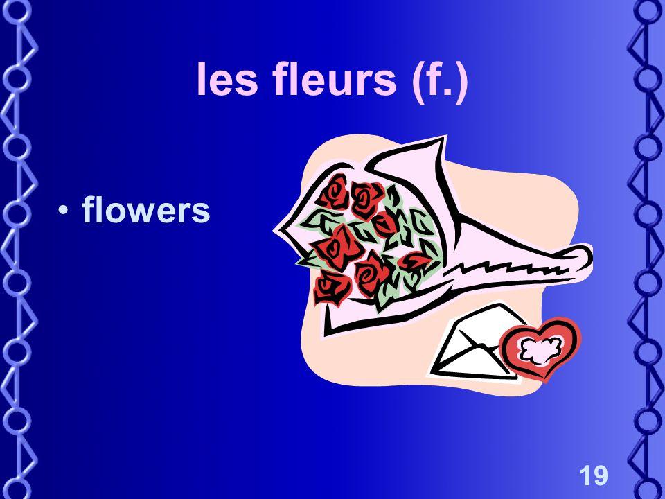 19 les fleurs (f.) flowers