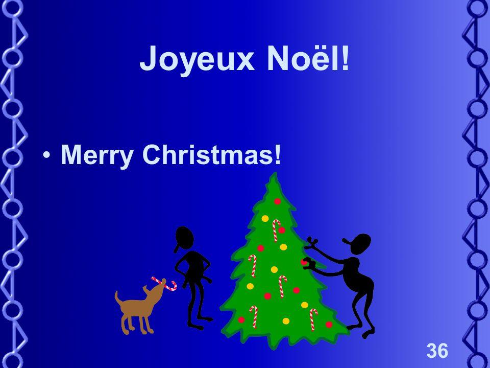 36 Joyeux Noël! Merry Christmas!