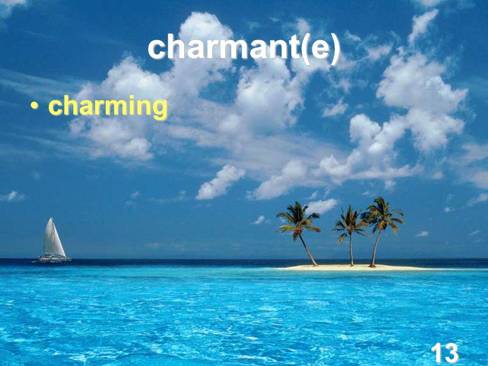 13 charmant(e) charmingcharming