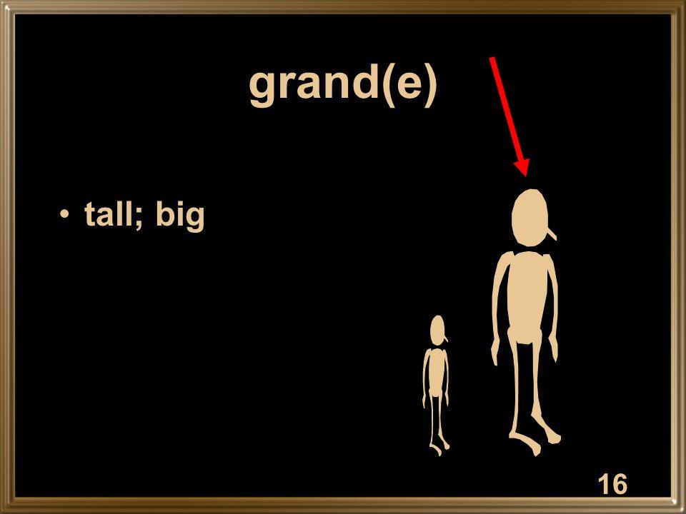 16 grand(e) tall; big