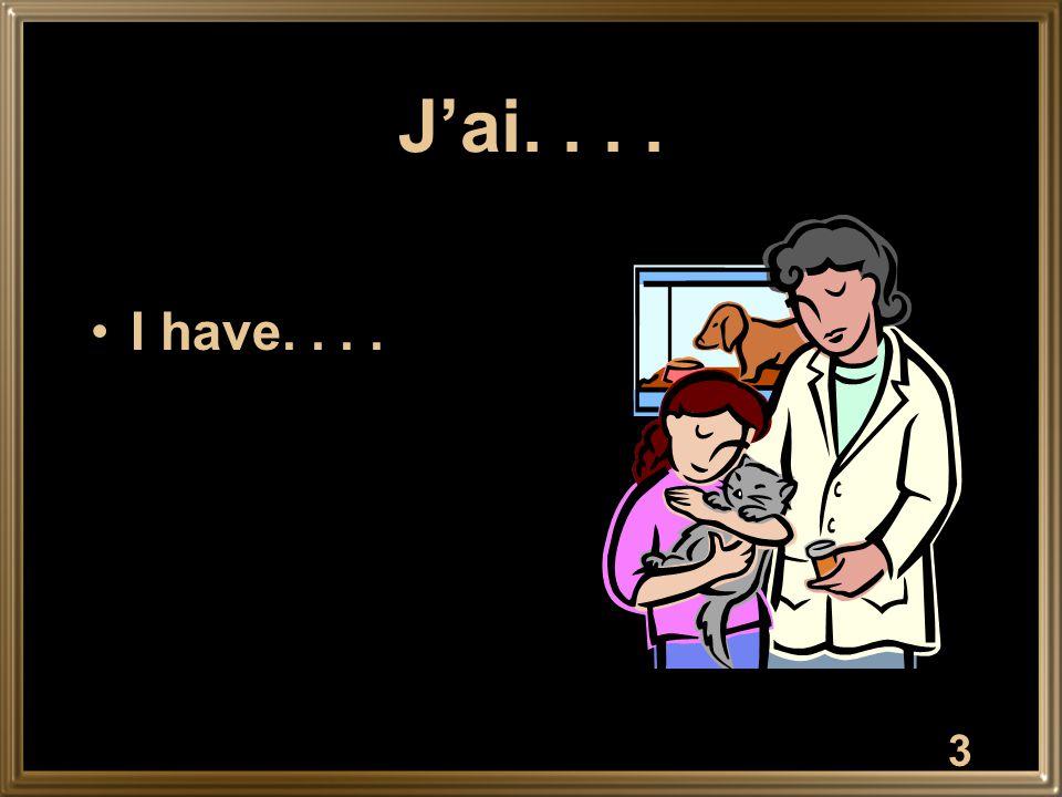 3 J'ai.... I have....