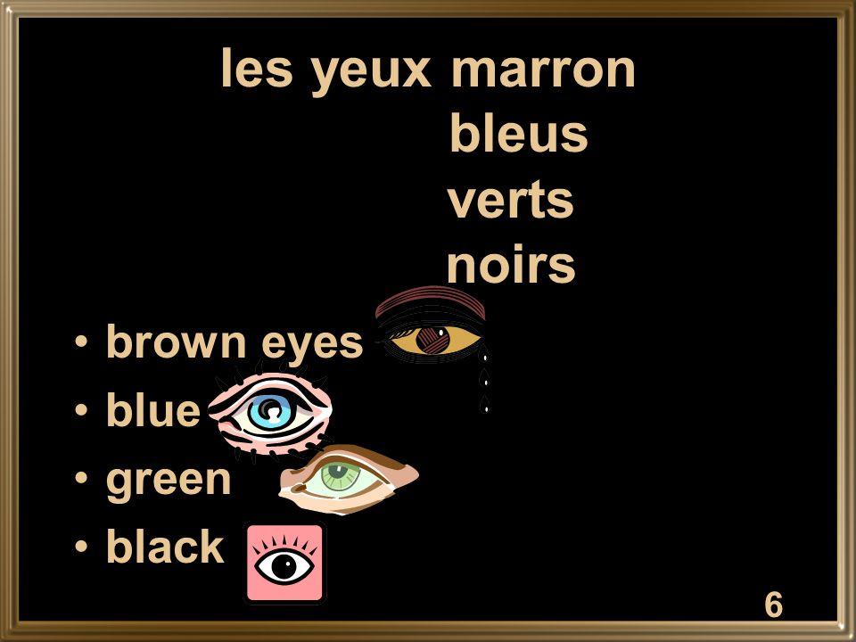 7 les cheveux blonds bruns châtains noirs roux blond hair dark brown brown black red