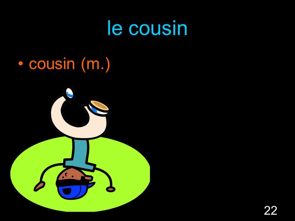 22 le cousin cousin (m.)