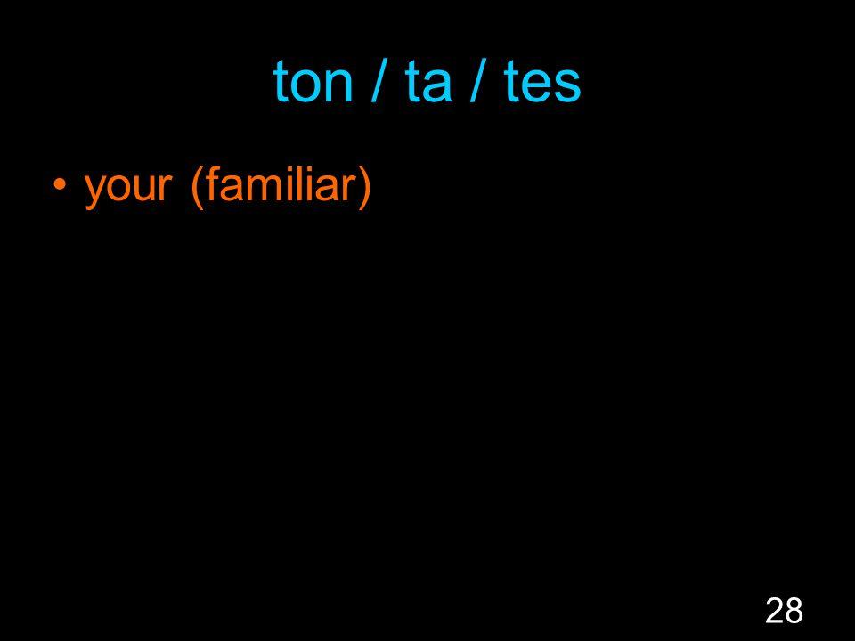 28 ton / ta / tes your (familiar)
