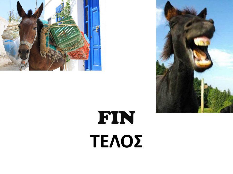 FIN ΤΕΛΟΣ
