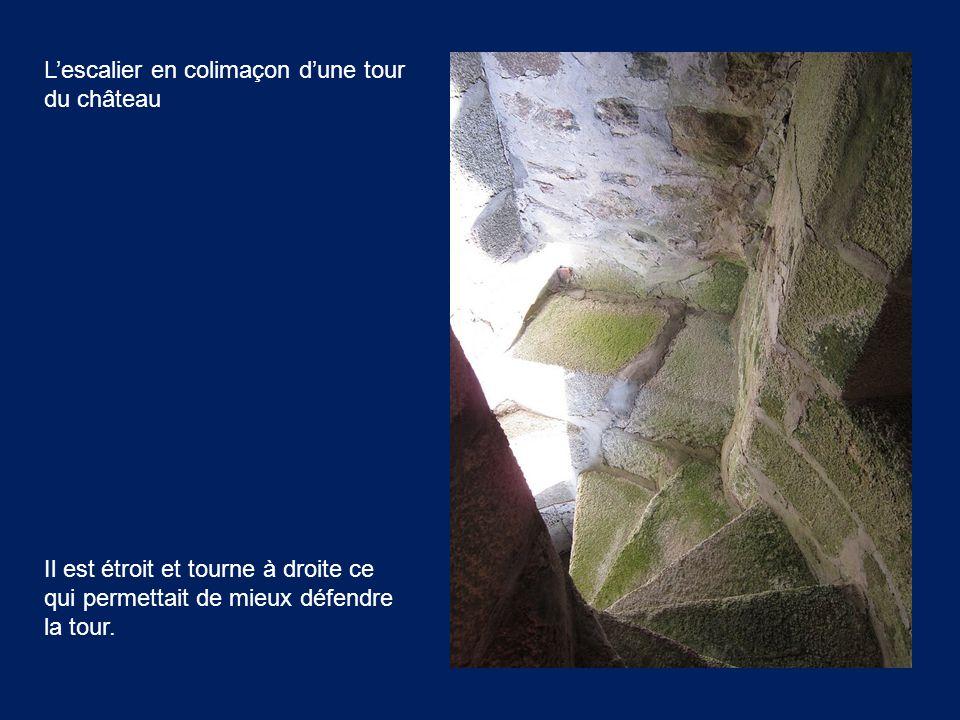Il est étroit et tourne à droite ce qui permettait de mieux défendre la tour. L'escalier en colimaçon d'une tour du château