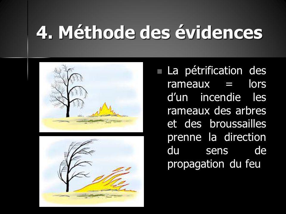 4. Méthode des évidences La pétrification des rameaux = lors d'un incendie les rameaux des arbres et des broussailles prenne la direction du sens de p