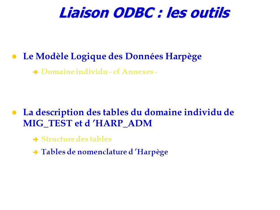 Liaison ODBC : les outils Le Modèle Logique des Données Harpège è Domaine individu - cf Annexes - La description des tables du domaine individu de MIG_TEST et d 'HARP_ADM è Structure des tables è Tables de nomenclature d 'Harpège