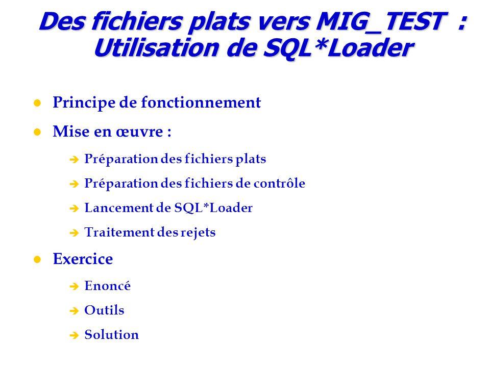 Des fichiers plats vers MIG_TEST : Utilisation de SQL*Loader Principe de fonctionnement Mise en œuvre :  Préparation des fichiers plats  Préparation des fichiers de contrôle  Lancement de SQL*Loader  Traitement des rejets Exercice  Enoncé  Outils  Solution