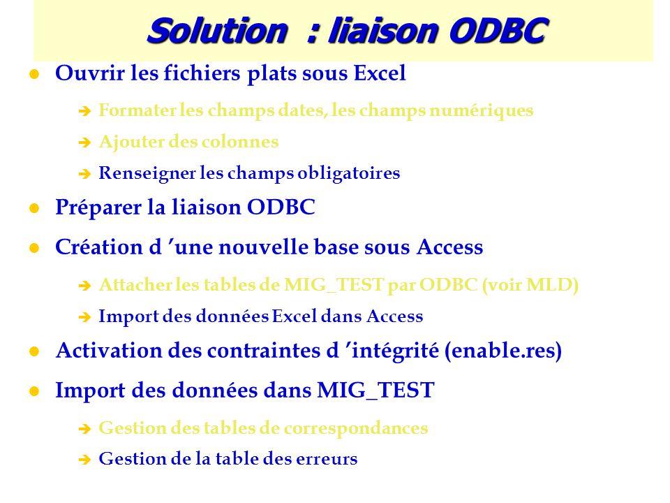 Solution : liaison ODBC Ouvrir les fichiers plats sous Excel è Formater les champs dates, les champs numériques è Ajouter des colonnes è Renseigner le