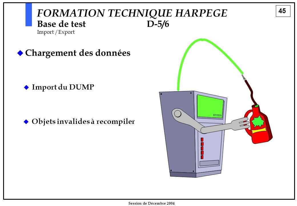 45 Session de Décembre 2004   Chargement des données  Import du DUMP FORMATION TECHNIQUE HARPEGE Base de testD-5/6 Import /Export   Objets invali