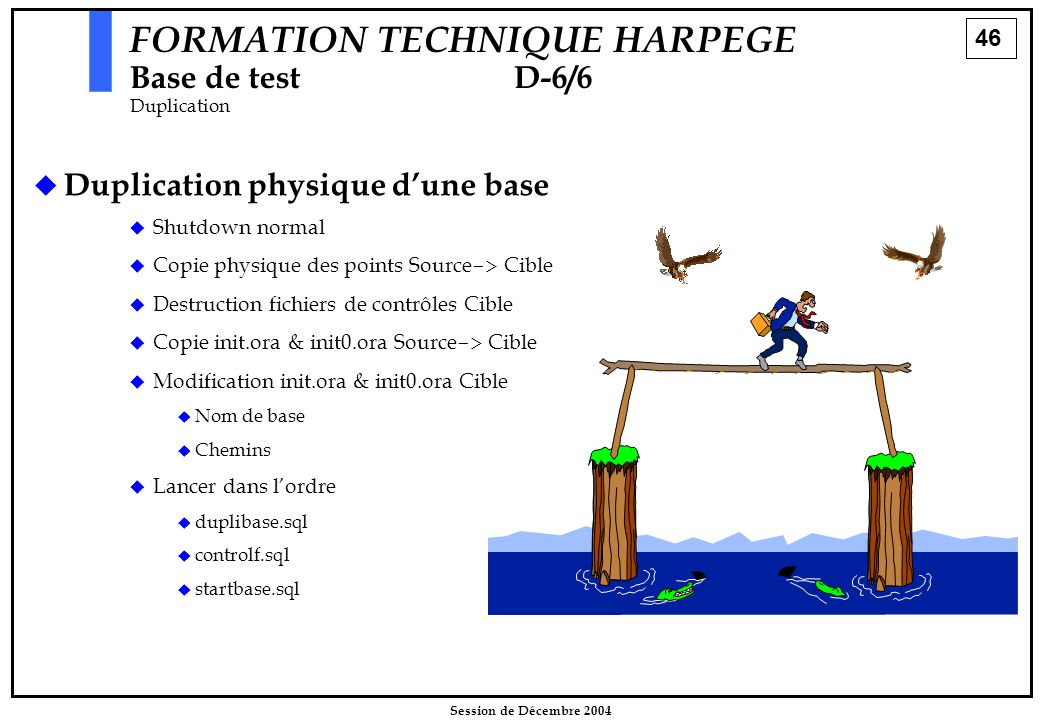46 Session de Décembre 2004 FORMATION TECHNIQUE HARPEGE Base de testD-6/6 Duplication   Duplication physique d'une base   Shutdown normal   Copie physique des points Source -> Cible   Destruction fichiers de contrôles Cible   Copie init.ora & init0.ora Source -> Cible   Modification init.ora & init0.ora Cible   Nom de base   Chemins   Lancer dans l'ordre   duplibase.sql   controlf.sql   startbase.sql
