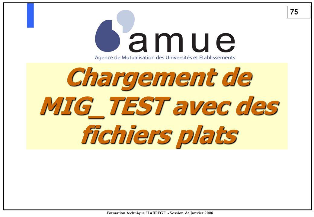 75 Formation technique HARPEGE - Session de Janvier 2006 Chargement de MIG_TEST avec des fichiers plats