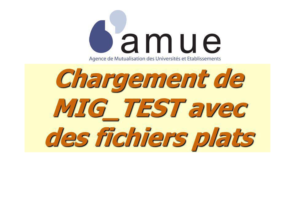 Chargement de MIG_TEST avec des fichiers plats