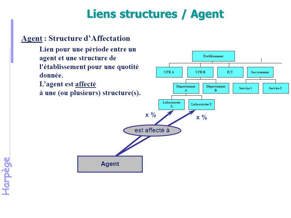 Harpège Agent x % Etablissement UFR AUFR BIUTSce commun Département A Département B Laboratoire X Laboratoire Y Service 1Service 2 est affecté à Agent : Structure d'Affectation Lien pour une période entre un agent et une structure de l établissement pour une quotité donnée.