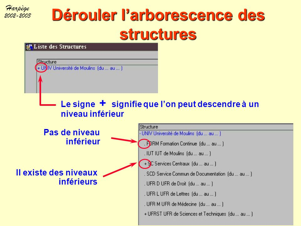 Harpège 2002-2003 Dérouler l'arborescence des structures Le signe + signifie que l'on peut descendre à un niveau inférieur Pas de niveau inférieur Il